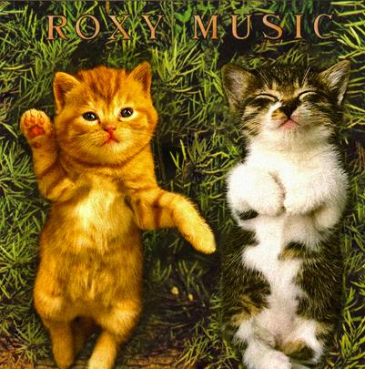 Roxy_Kittens_1