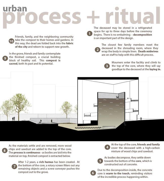 Urban-death-process.jpg.650x0_q85_crop-smart
