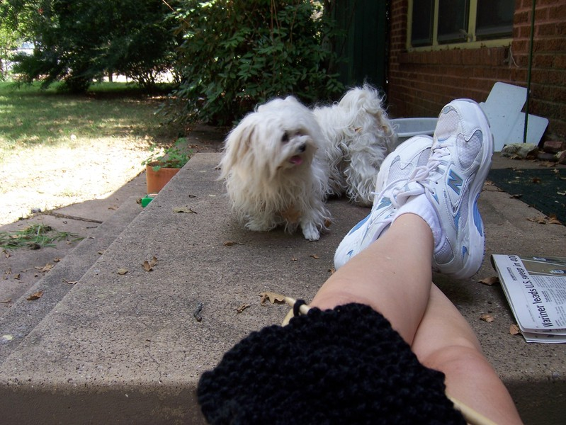 Knitting_in_leaves
